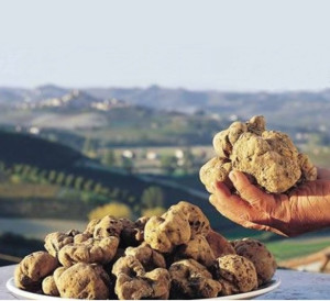 Monte Oliveto and truffles of the Crete