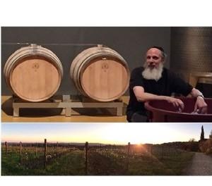 E-Bike & Kosher Wine Tour